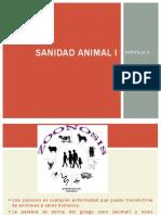 Unidad 2 Sanidad animal I - transmision de enfermedades.pdf