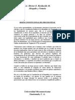 Diseño Constitucional del Derecho Penal