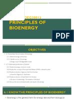 Chapter 6 -Principle of Bionergy.pdf