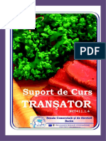 Transator.doc