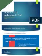 Adulto Mayor, evaluación II EFAM
