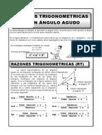 TEORIA RAZONESTRIGONOMETRICAS.docx