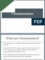 Chromosomes.pdf