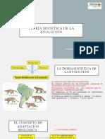 teoría sintética de la evolución_SIMON