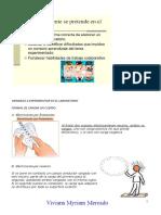 RESUMEN MATERIAL LABORATORIO ELECTROSTÁTICA 3