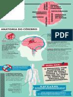 malformacao-arteriovenosa-infografico.pdf