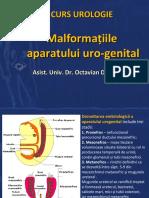 Curs-Urologie-2-Malformat.ppt