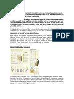 Evidencia_1_Asesoria_Caso_Exportacion