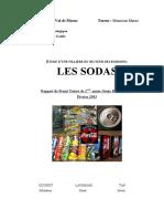 projet_final_soda (1).pdf