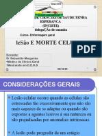 lesao e morte celular