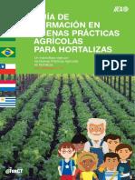 000000_Guia de Formacion en Buenas Practicas Agricolas Para Hortalizas (1)