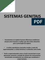 SISTEMAS GENITAIS - 8ANO