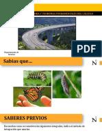 1. Integral Definida.pdf