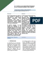 Características y Control de Las Vibraciones Producidas Por Acción de Las Voladuras en Minas a Cielo Abierto