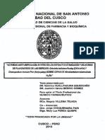 TESIScuscoCHIRICHIRI.pdf