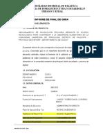 INFORME FINAL DOCUMENTO OFICIAL PLANTILLA.docx