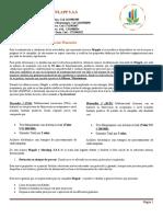 Primera Entrega Simulación-Simulapp S.A.docx