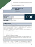 II.a. Propuesta Instrumento PFE 10 años_v2rev.docx