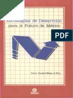 Estrategia de Desarrollo para el Futuro de México.pdf