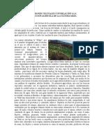 EXPRESIONES CULTUALES CON RELACIÓN A LAAGRICULTURA MAYA.docx