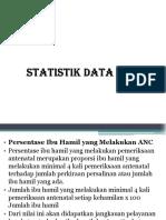 12 Statistik Data klinis