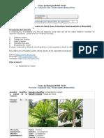Formato entrega Tarea 1  2020 16-01 .docx