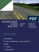 Pathologies des routes