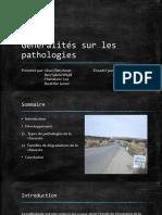 Généralités sur les pathologies des routes