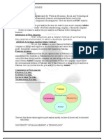 What is Pest Analysis