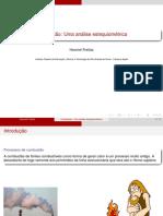 Estqeuiometria da combustao e analise energetica de combustiveis.pdf
