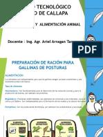 PREPARACIÓN DE RACIÓN PARA GALLINAS DE POSTURAS.pdf