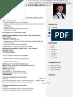 83-curriculum-vitae-laboral