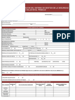 Diagnostico Sistema de Gestion SST