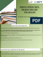 SEMANA 4-PRINCIPIOS DEL DERECHO
