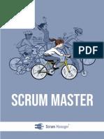 Scrum Master Spanish