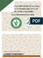 cannabis en medicina veterinaria