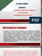 PPT-N°6-ACCIÓN DE AMPARO-(1)-UCV-2020-I- (1).pdf
