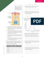 Actividad sistema urinario séptimo.pdf