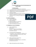 ESQUEMA_PARA_PRESENTAR_PLAN_DE_PRACTICAS_PRE_PROFESIONALES[1].docx