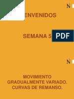 CURVAS DE REMANSO