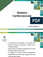 Cardiovascular parte 2.pptx