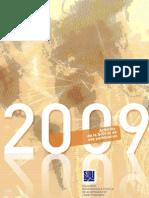 SIDI - Rapport d'activités 2009