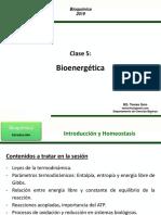Clase 5 - Bioenergética TS 2019-2