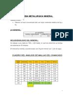 PRUEBA METALURGICA MINERAL