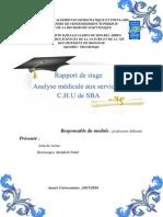rapport-de-stage-professeur-abbouni.pdf