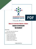 RIO PILCOMAYO - LUIS FERNANDO MENDOZA RIOS