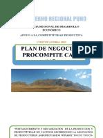 PLAN NEGOCIO ASOCION DE PRODUCTORES TOCCO TOCCO.docx