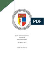 Práctica  AA- Refrigerantes Isabel  Read 2017-5646.docx