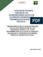 ESTUDIO RIESGOS DESASTRES NATURALES LAS ORQUIDEAS