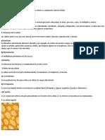 micoorganismos La célula y el microscopio.docx